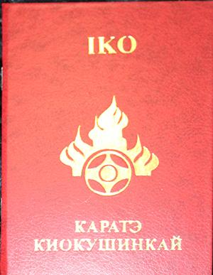паспорт ИКО