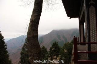 Международный лагерь Киокушинкай - Мицуминэ (65)