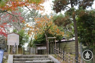 Нара, Япония (100)