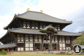Нара, Япония (69)