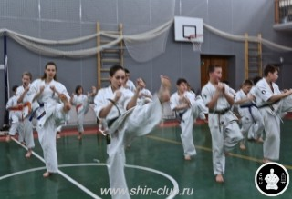 тренировка Киокушинкай 2016 ударов (115)