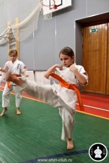 тренировка Киокушинкай 2016 ударов (123)
