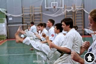 тренировка Киокушинкай 2016 ударов (132)