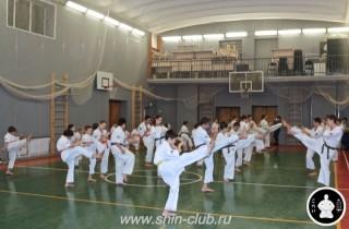 тренировка Киокушинкай 2016 ударов (141)