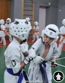 тренировка Киокушинкай 2016 ударов (276)