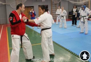 тренировки Киокусинкай (170)