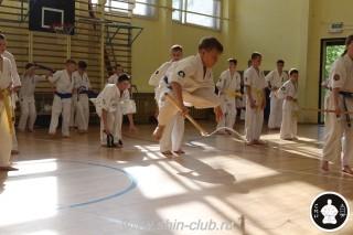 экзамены Киокушинкай каратэ (277)