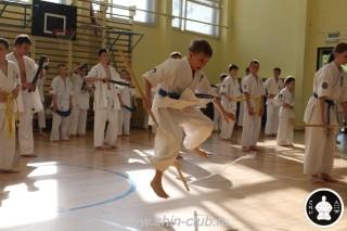 экзамены Киокушинкай каратэ (278)