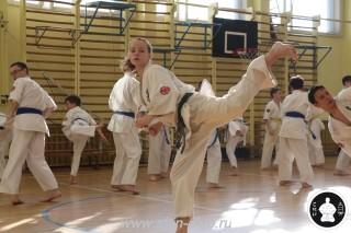 экзамены Киокушинкай каратэ (355)