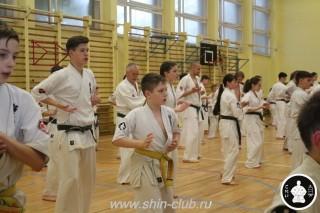 спорт каратэ для детей (100)