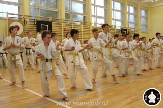 спорт каратэ для детей (101)