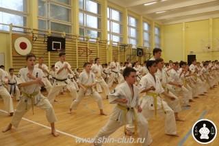 спорт каратэ для детей (105)