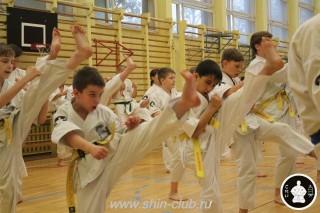 спорт каратэ для детей (11)