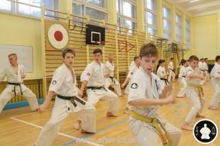 спорт каратэ для детей (14)