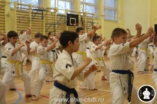 спорт каратэ для детей (18)
