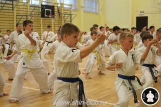 спорт каратэ для детей (20)