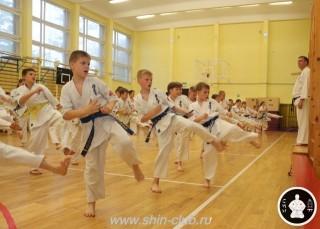 спорт каратэ для детей (24)