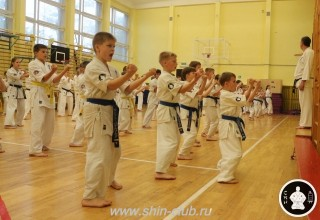 спорт каратэ для детей (25)
