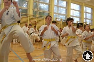 спорт каратэ для детей (30)