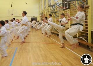 спорт каратэ для детей (51)