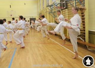 спорт каратэ для детей (52)