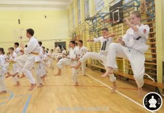 спорт каратэ для детей (53)