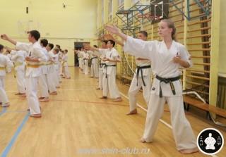 спорт каратэ для детей (55)