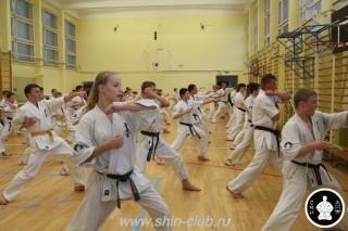 спорт каратэ для детей (67)