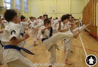 спорт каратэ для детей (7)