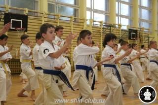 спорт каратэ для детей (75)