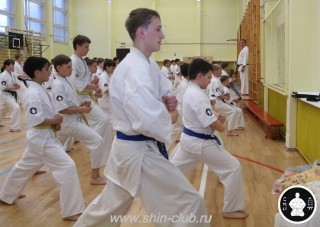 спорт каратэ для детей (81)