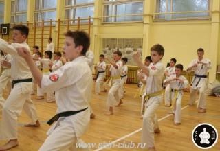 спорт каратэ для детей (82)