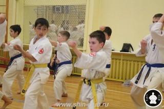 спорт каратэ для детей (85)