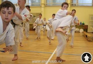 спорт каратэ для детей (91)