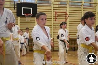 спорт каратэ для детей (92)