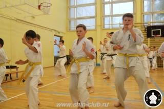 спорт каратэ для детей (93)
