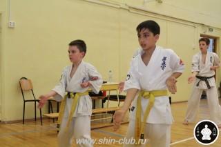 спорт каратэ для детей (94)