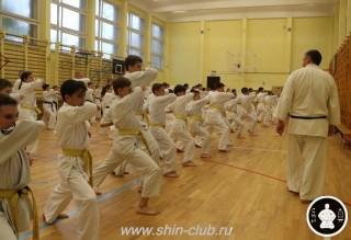 спорт каратэ для детей (96)
