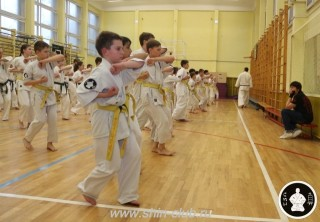 спорт каратэ для детей (98)