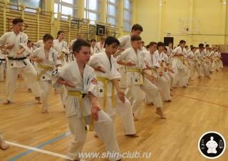 спорт каратэ для детей (99)