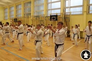 тренировки киокусинкай (39)