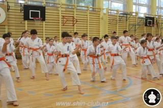занятия каратэ для детей (100)