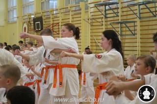 занятия каратэ для детей (113)
