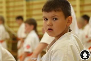 занятия каратэ для детей (14)