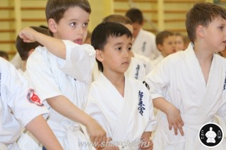 занятия каратэ для детей (33)