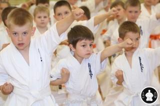 занятия каратэ для детей (43)