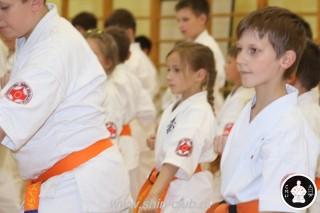 занятия каратэ для детей (51)