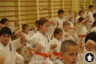 занятия каратэ для детей (58)