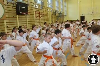 занятия каратэ для детей (59)