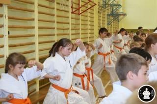 занятия каратэ для детей (60)